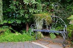Witte gekleurde smeedijzerbank in de tuin met tropische installaties Royalty-vrije Stock Afbeelding