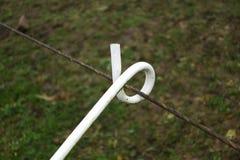 Witte gekrulde draadgids of kabelgids in een weide royalty-vrije stock afbeelding