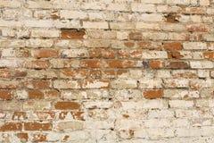 Witte geschilderde oude bakstenen muur Royalty-vrije Stock Foto