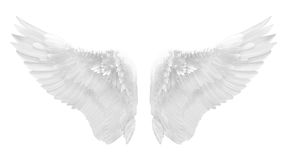 Witte geïsoleerde engelenvleugel Stock Foto