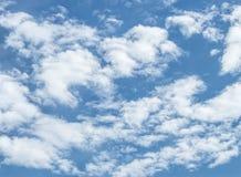Witte gezwollen wolken Stock Fotografie