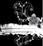 Witte grungebanner met bloemen Royalty-vrije Stock Foto's