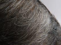 Witte haired van hoofd stock fotografie