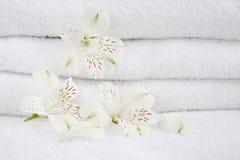 Witte handdoeken Royalty-vrije Stock Fotografie