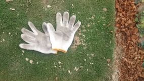Witte handschoenen Royalty-vrije Stock Afbeeldingen