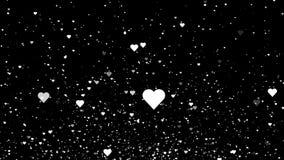 Witte harten die op de zwarte achtergrond vliegen De achtergrond van de de dagmotie van Valentine 4K stock illustratie