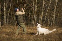 Witte herder met meester stock foto
