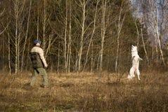 Witte herder met meester Royalty-vrije Stock Fotografie