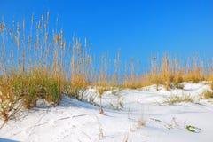 Witte het zandduinen van golfkusten royalty-vrije stock afbeeldingen