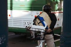 Witte hond in de mand bij de fietser Stock Foto's