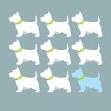 Witte hond op een donkere achtergrond Stock Illustratie