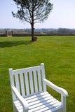 Witte houten leunstoel royalty-vrije stock foto