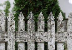 Witte houten omheining Royalty-vrije Stock Afbeeldingen