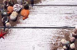 Witte houten raad met zand en shells Royalty-vrije Stock Afbeelding
