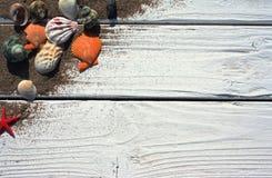 Witte houten raad met zand en shells Stock Afbeelding