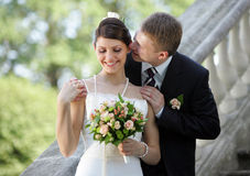 Witte huwelijksbruid en bruidegom Royalty-vrije Stock Afbeelding