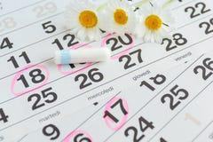 Witte kalender met roze cirkels die rond de periode van de menstruatiedatum en schone tampons op bovenkant liggen Royalty-vrije Stock Afbeeldingen