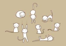 Witte kattenreeks Royalty-vrije Stock Fotografie