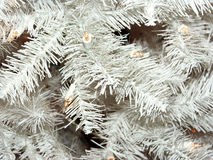 Witte Kerstboom Royalty-vrije Stock Foto's