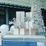 Witte Kerstmis Stock Foto's