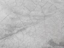 Witte kleur van de cement de oude textuur Stock Fotografie
