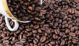 Witte kop die met koffiebonen wordt gevuld Stock Foto