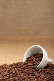 Witte kop met koffiebonen Royalty-vrije Stock Foto