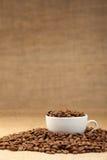 Witte kop met koffiebonen Stock Afbeelding