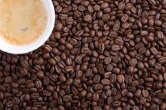 Witte kop van coffe royalty-vrije stock foto