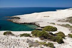 Witte krijtrotsen geërodeerdeh kustlijn Stock Afbeeldingen