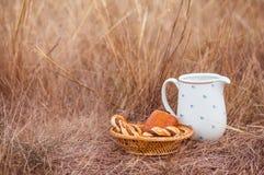Witte kruik en gebakken broodjes op het gebied stock afbeelding