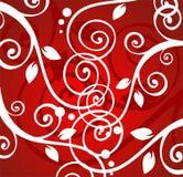 Witte krullen Royalty-vrije Stock Afbeeldingen