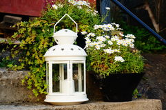 Witte lantaarn dichtbij witte bloemen, Noorwegen Royalty-vrije Stock Foto's