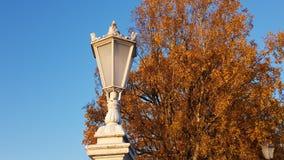 Witte lantaarns op de omheining stock afbeelding