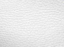 Witte leer dichte omhooggaand Stock Foto