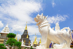 Witte leeuw die de pagode bewaken, chiang MAI Royalty-vrije Stock Afbeeldingen