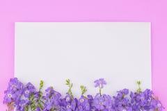 Witte lege kaart royalty-vrije stock foto's