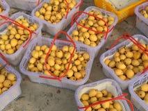 Witte Loquat stock afbeelding