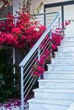Witte marmeren die trap met mooie purpere bloemen wordt verfraaid stock foto