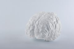 Witte menselijke hersenen op witte achtergrond. Stock Foto