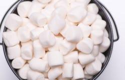 Witte mini gezwollen heemst ia een zwarte kom op witte backgroun Stock Foto
