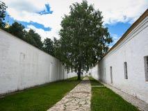 Witte muren en groene boom in Suzdal, Vladimir-gebied, Rusland Royalty-vrije Stock Afbeeldingen