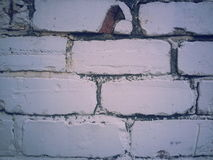 Witte muur Royalty-vrije Stock Foto