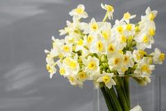Witte narcissen De lentebloem op retro lijst Modieus bureau Plaats voor ingangen Plaats voor de inschrijving Boeket Stock Foto's