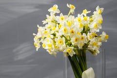 Witte narcissen De lentebloem op retro lijst Modieus bureau Plaats voor ingangen Plaats voor de inschrijving Boeket Royalty-vrije Stock Afbeeldingen