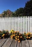 Witte Omheining en Tuin Royalty-vrije Stock Afbeeldingen