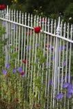 Witte omheining met bloemen Stock Afbeelding