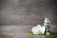 Witte orchidee en kuuroordstenen op de grijze achtergrond royalty-vrije stock afbeelding