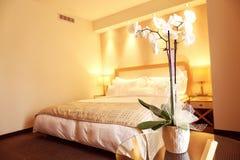Witte orchidee in hotelruimte stock afbeeldingen