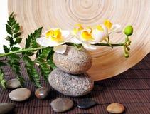Witte orchidee op stenen royalty-vrije stock foto's